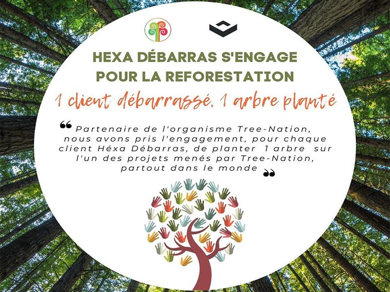 Hexadebarras s'engage à la reforestation avec Tree-Nation
